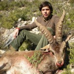 1.Ibex