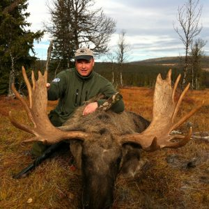 Knut Moose